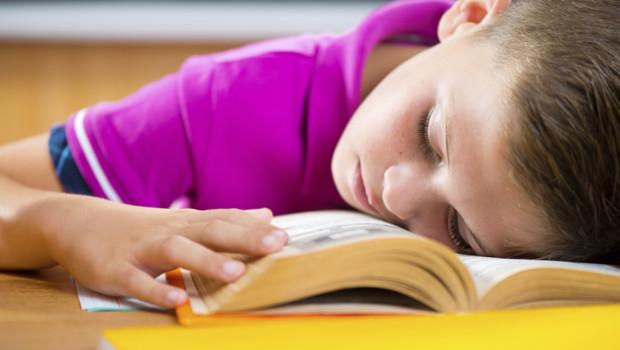 Le lent déclin des rythmes scolaires